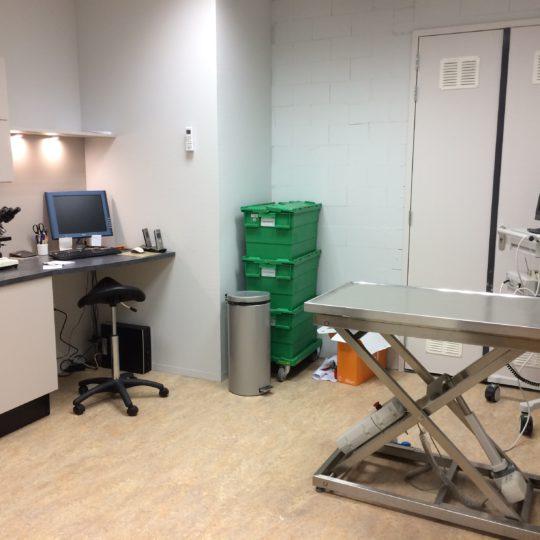 http://vetcare.amsterdam/wp-content/uploads/2016/09/IMG_3202-540x540.jpg