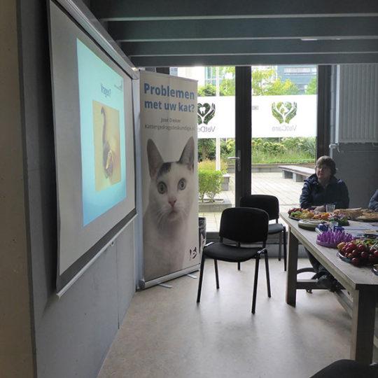 http://vetcare.amsterdam/wp-content/uploads/2016/10/P1010713-540x540.jpg