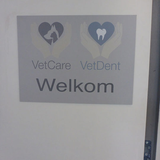 http://vetcare.amsterdam/wp-content/uploads/2016/10/P1010720-540x540.jpg