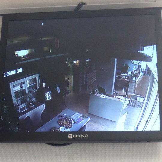 http://vetcare.amsterdam/wp-content/uploads/2016/10/P1010731-540x540.jpg